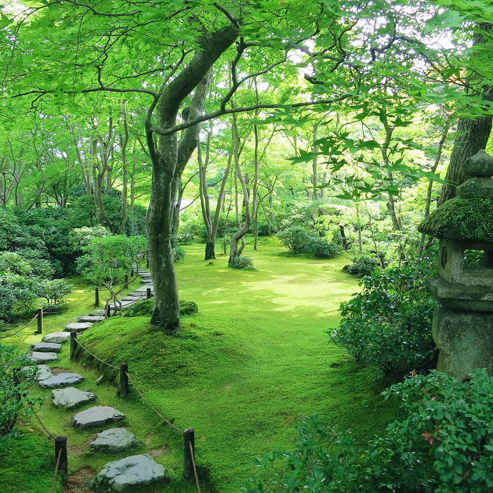 Ōkōchi Sansō (大河内山荘)
