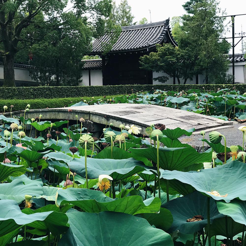 Tōfuku-ji (東福寺) Pond Garden